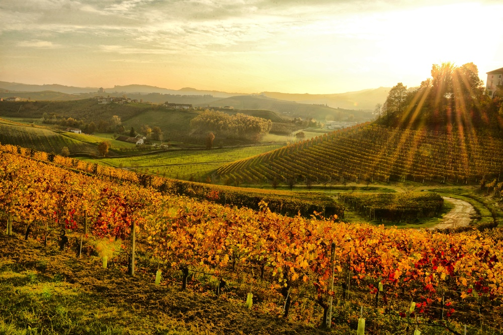 The Best Fall Travel Destinations -