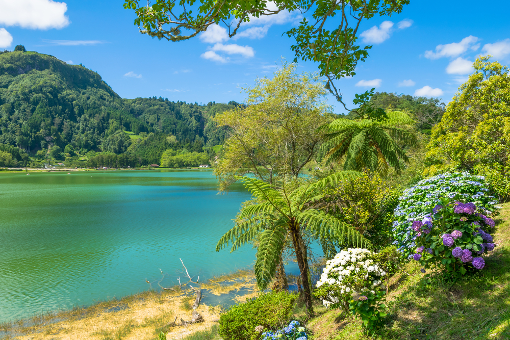 view of unique lagoon in furnas sao miguel azores portugal .jpg