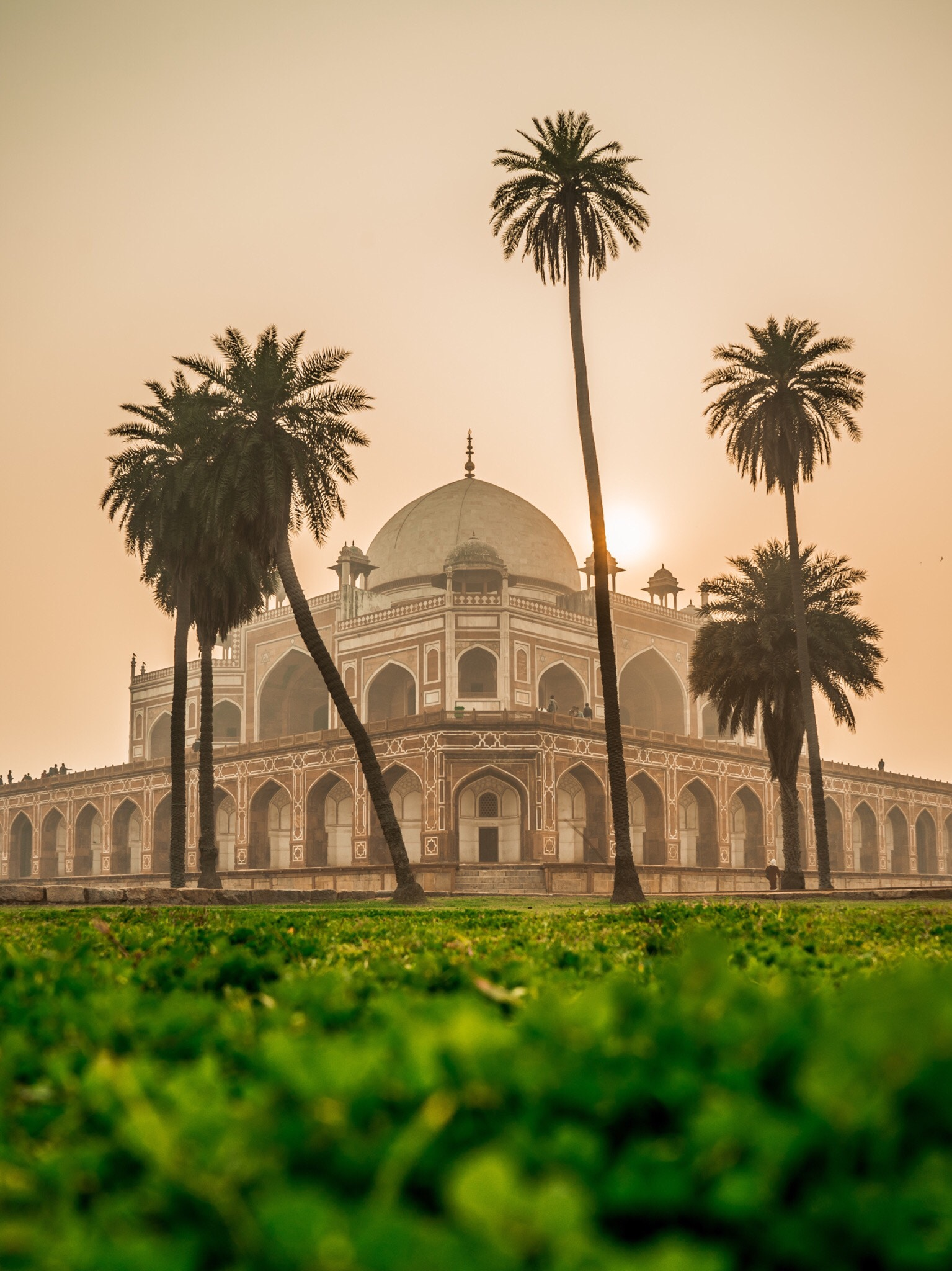mosque with sun behind it with palm trees in india