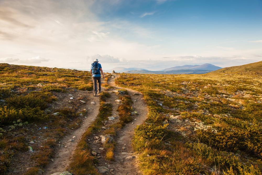 hiker walking through open grasslands
