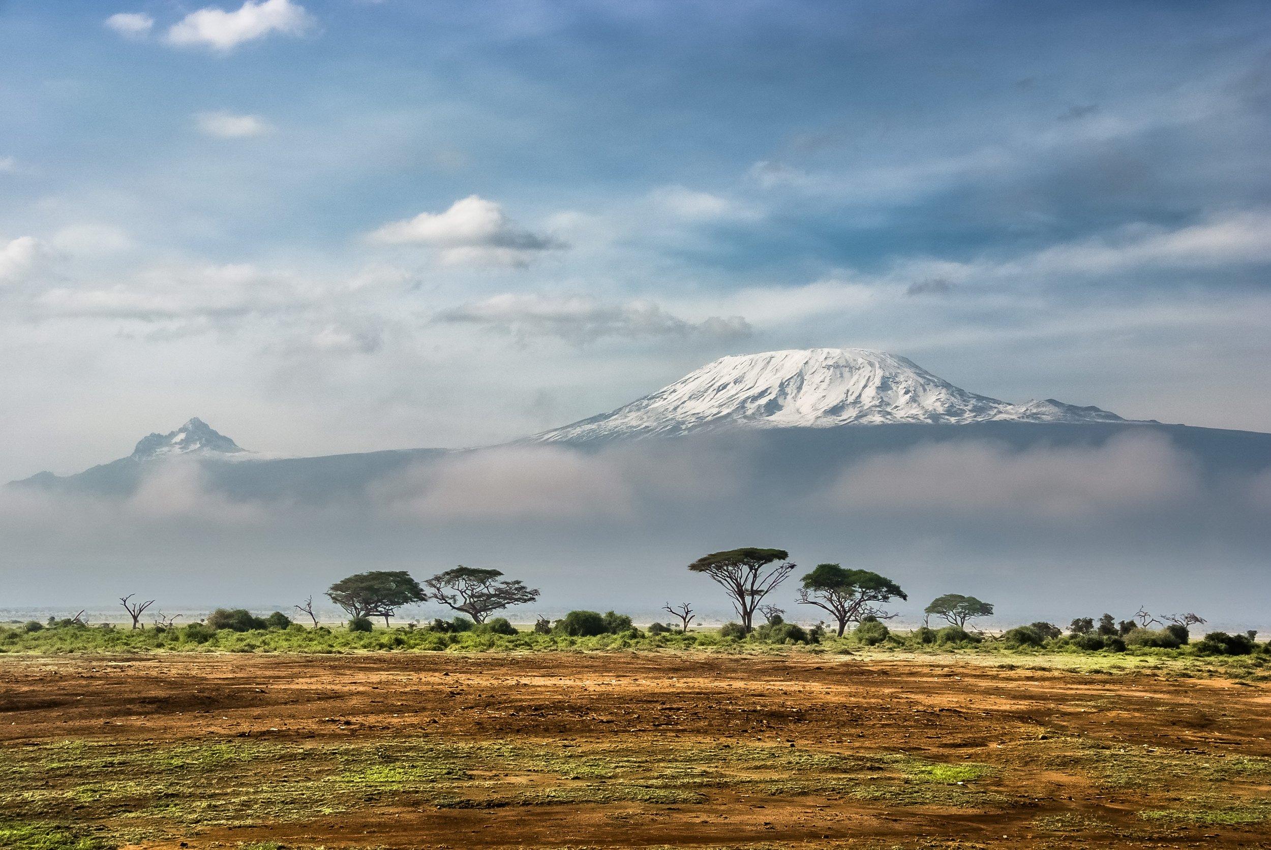 snow topped Mount Kilimanjaro behind the savannah