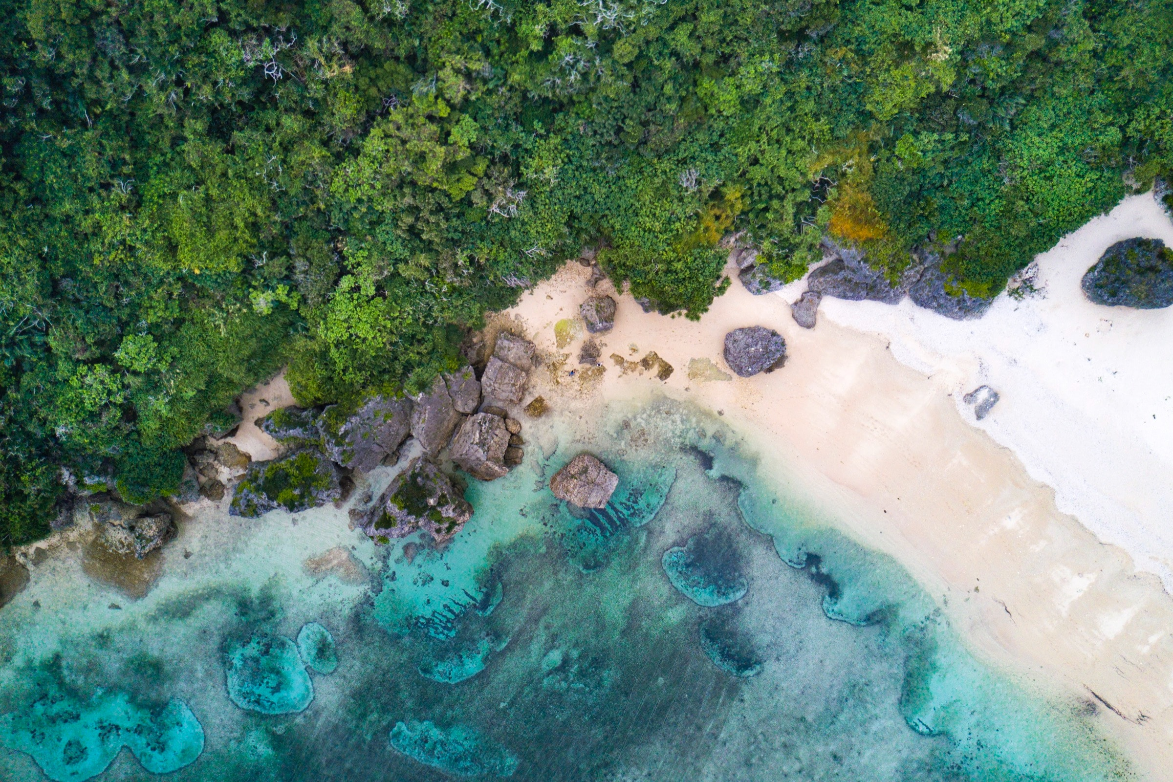 aerial view of virgin beach with jungle background