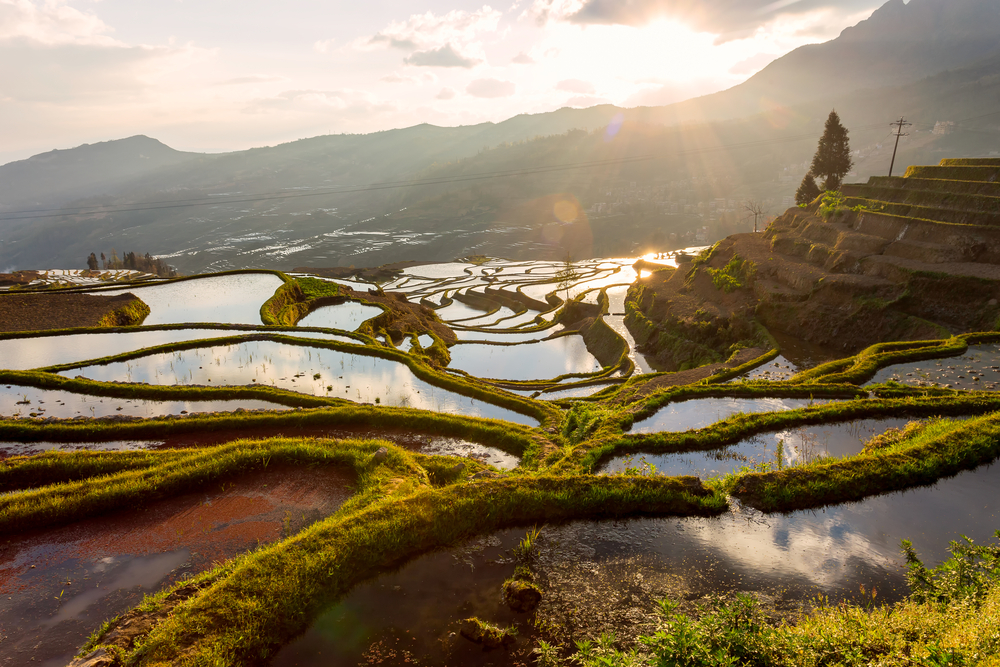 yuanyang rice terraces with mountains and sunset in the background