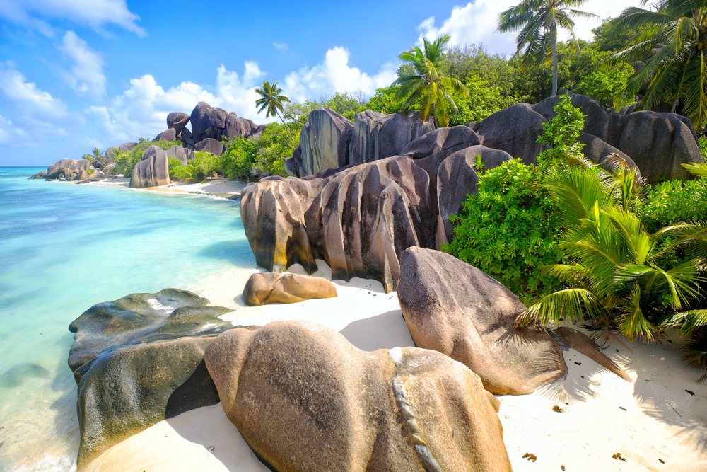 beautiful white sand beach with boulders and palm trees