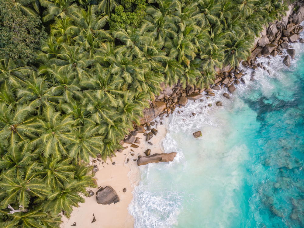 aerial shot of white sand beach next to jungle and ocean