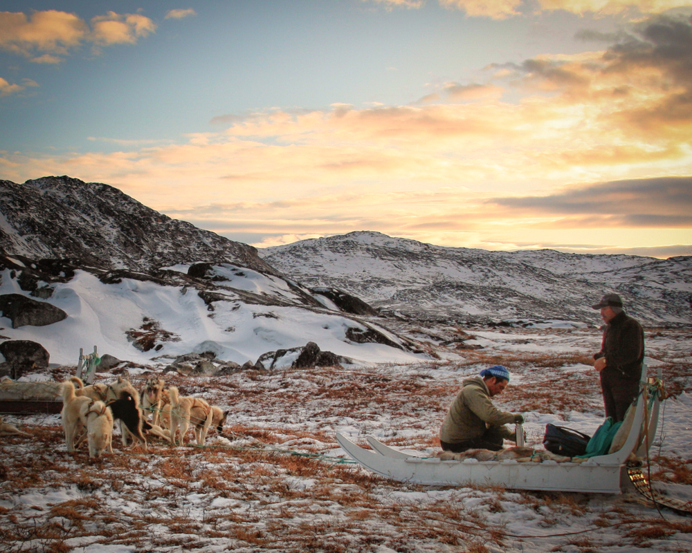 Two Greenlandic men drink hot coffee while waiting next to their team of Greenland husky dogs in a snowy landscape near Ilulissat in West Greenland