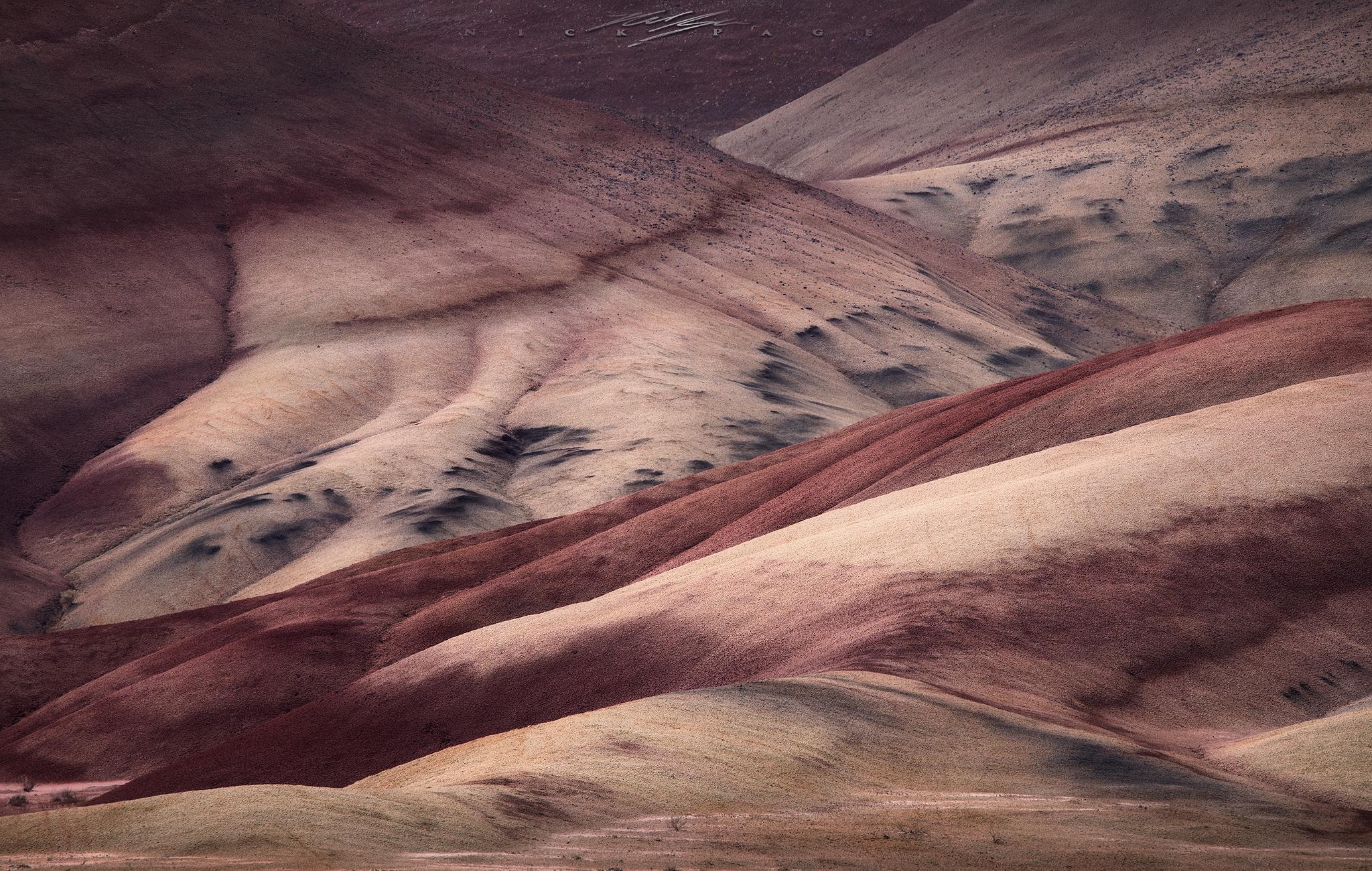 alien-landscape.jpg