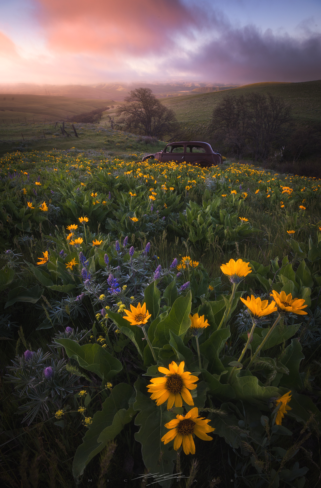 Dalles-mountain-ranch-sunrise.jpg