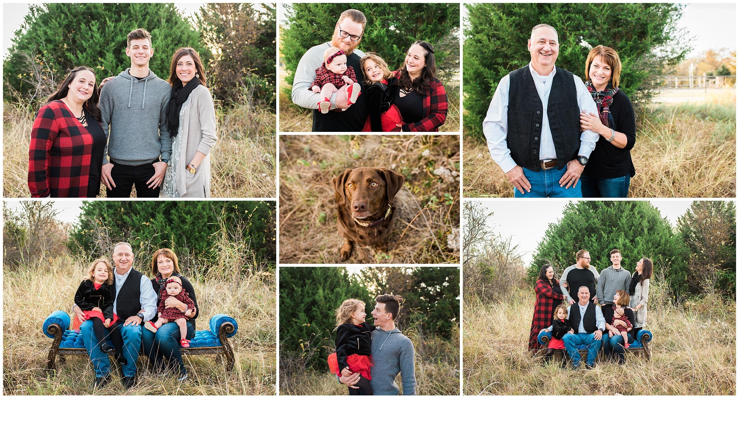 littleelmfamilyphotos.jpg