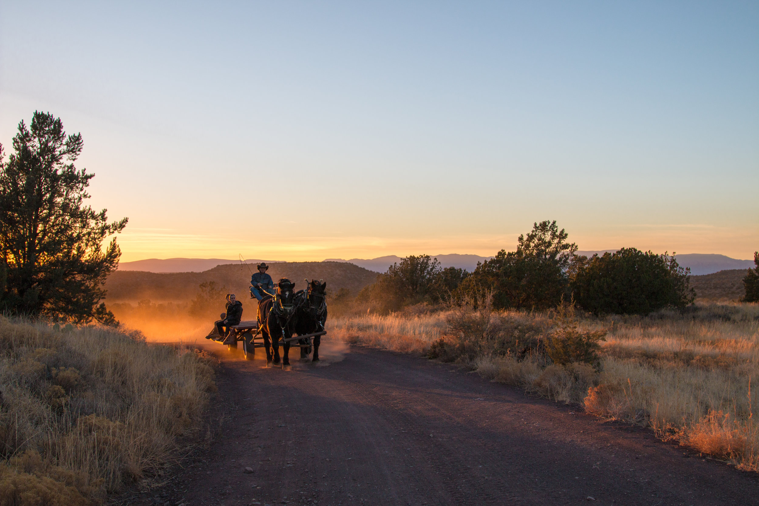 M Diamond Ranch (25).jpg