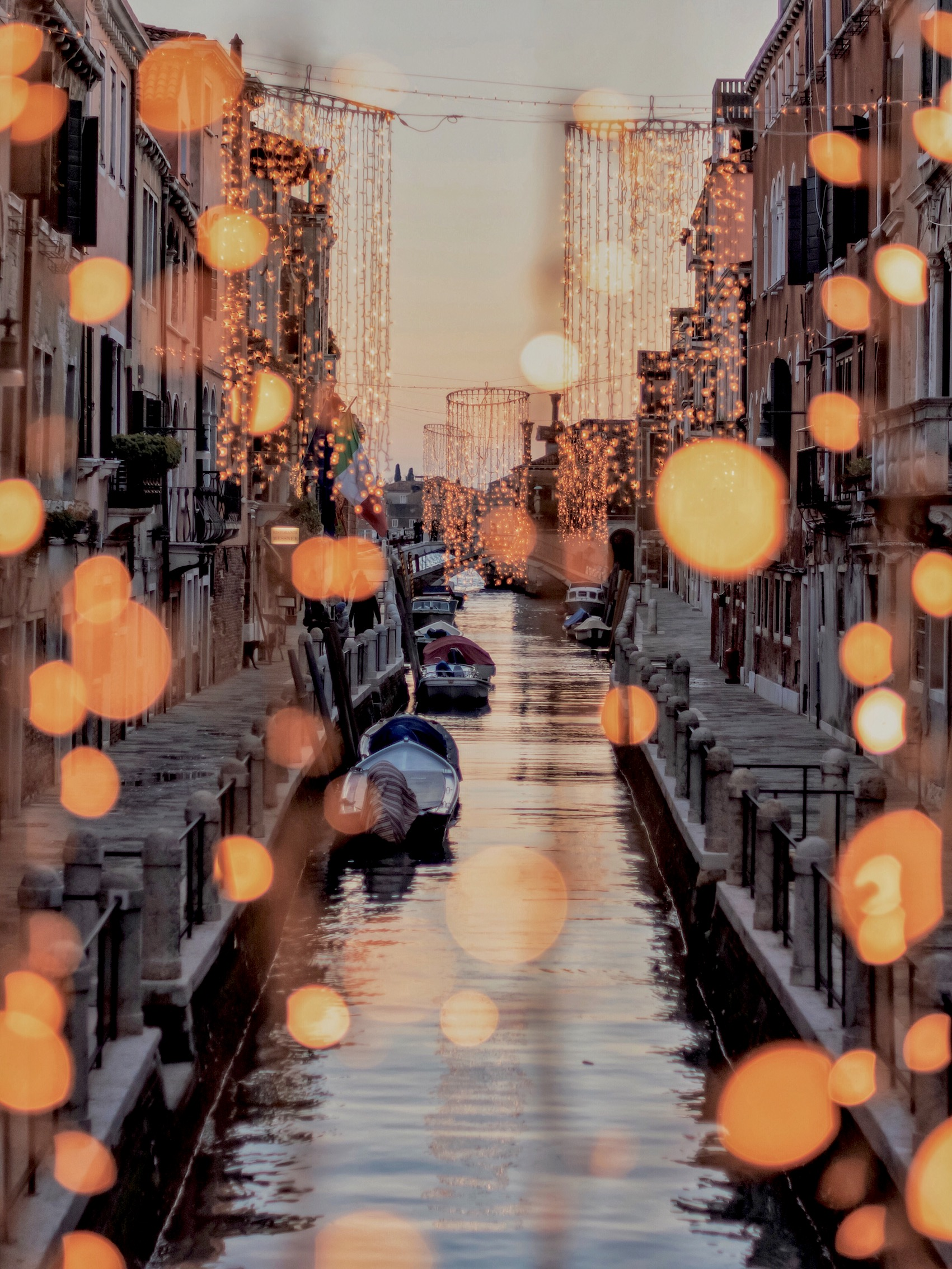 Copy of Christmas lights