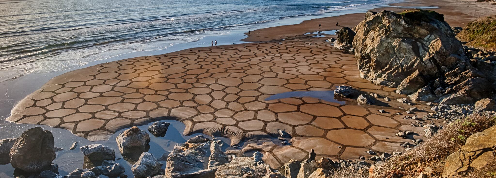 'Cells III', 2013. Stinson Beach, CA..jpg