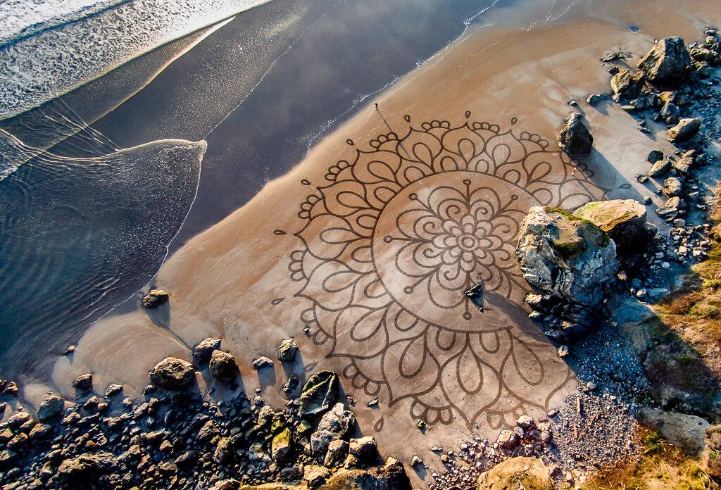 'Prayer Flower II', 2015. Stinson Beach, CA.jpg