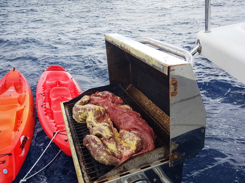 food-beef-on-bbq-kayak-claudiab.jpg