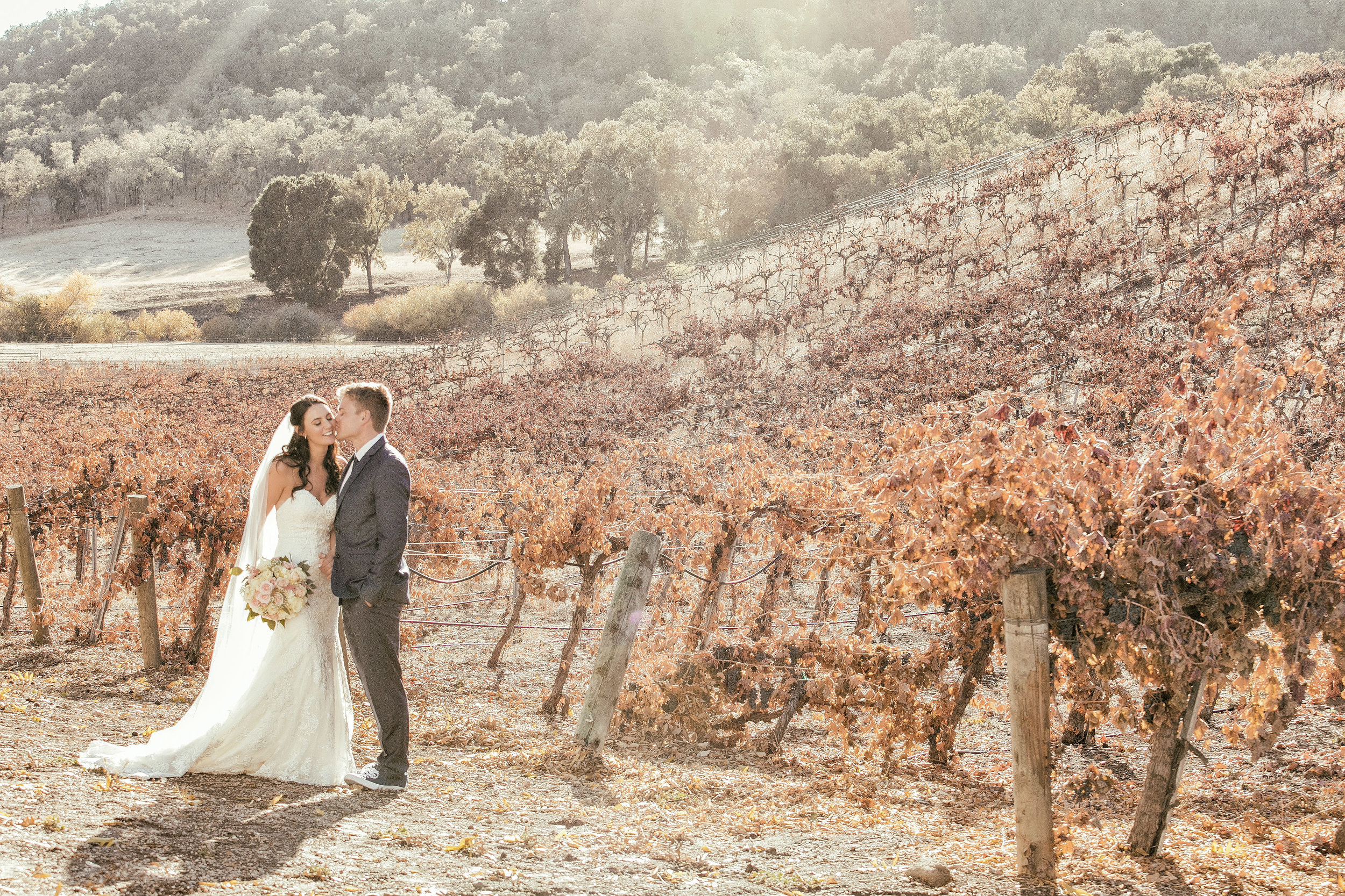 SARKIS-HAMMERSKY-PASO-ROBLES.jpg