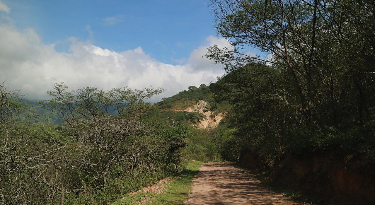 Bramaderson-landscape.jpg