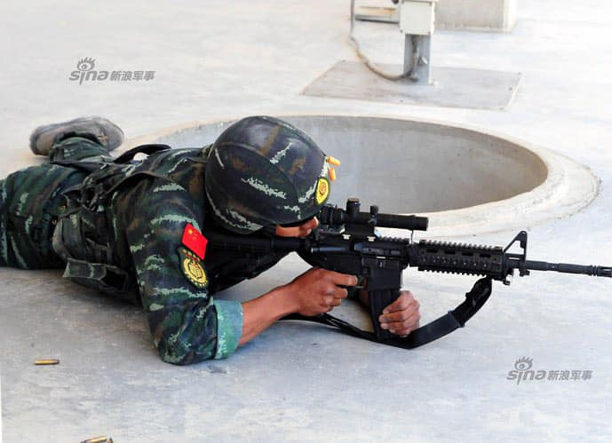 P.A.P. Soldier with NORINCO CQ rifle