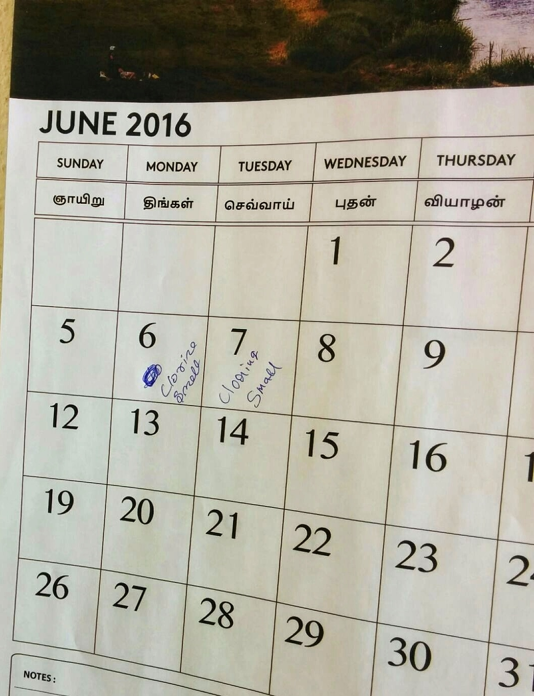 Diary Studies  Providing users with a calendar to note down their experience of new sanitation facilities