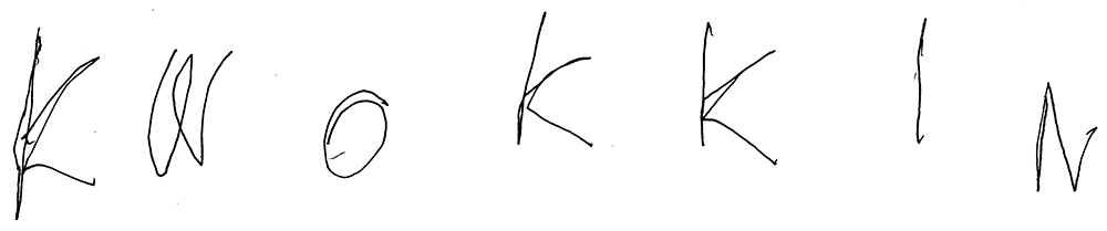 Kwok Kin signature.jpg
