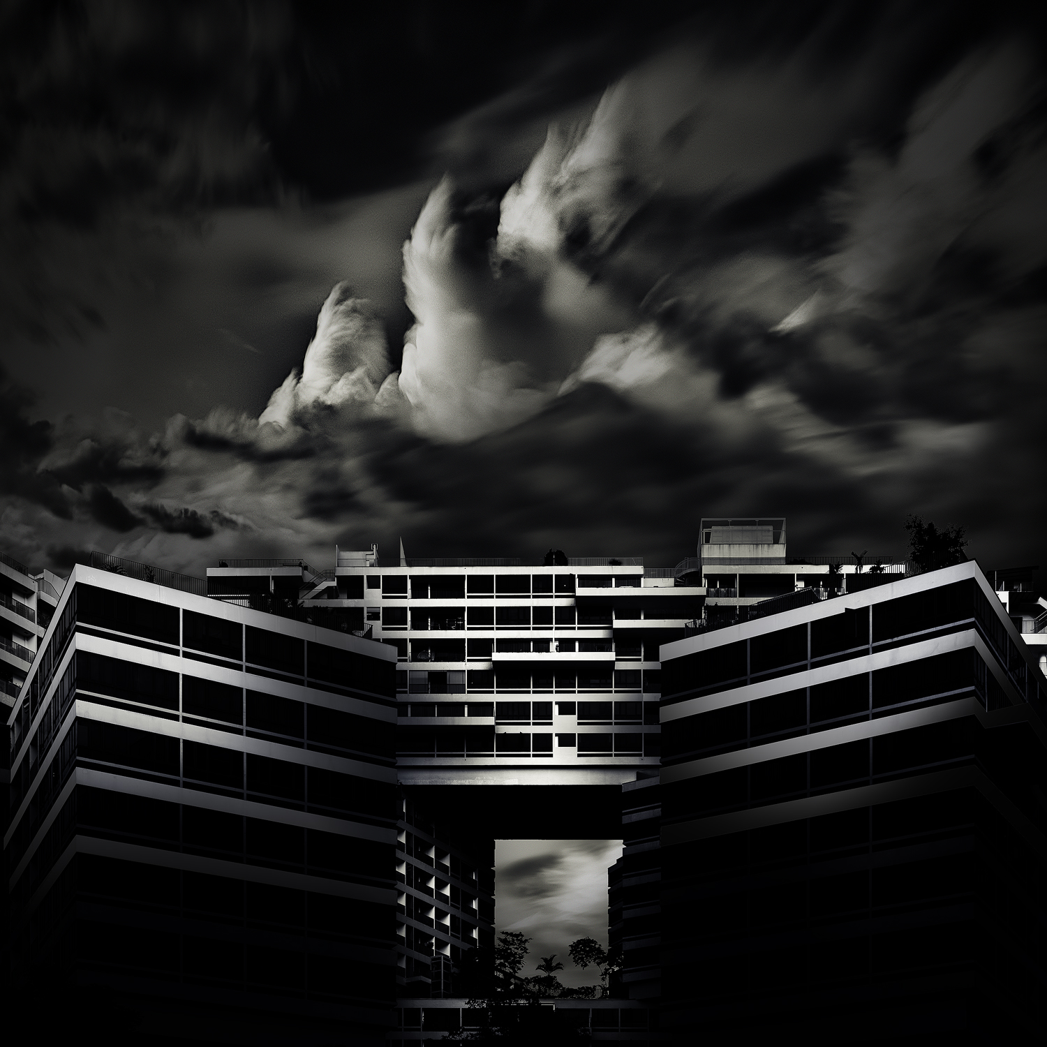 The Interlace II, One of the category winners of American Photographic Awards 2017.