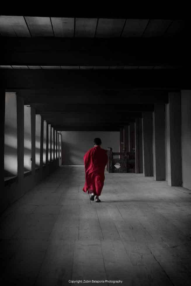 Red Boy Monk