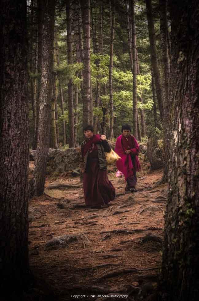 The Tree Ladies of Bhutan