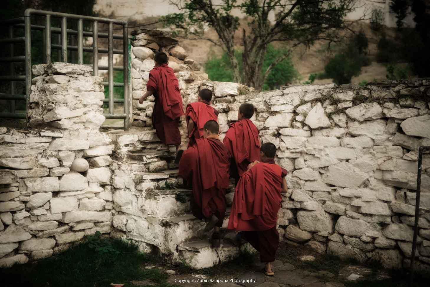 Junior Monk Race