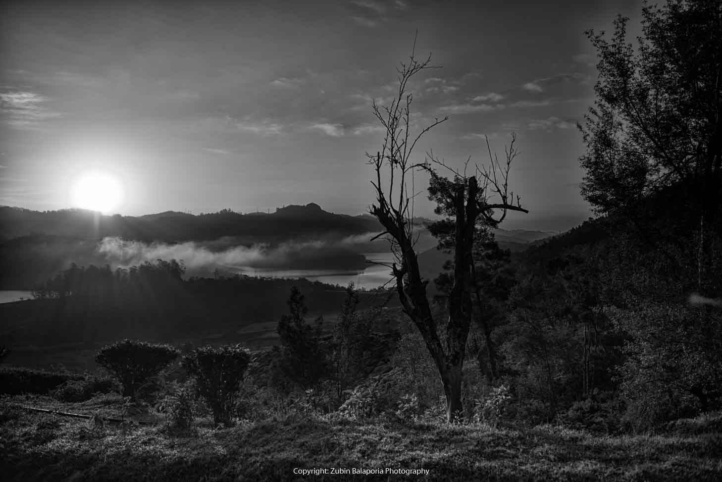 Colours of the Dawn BW