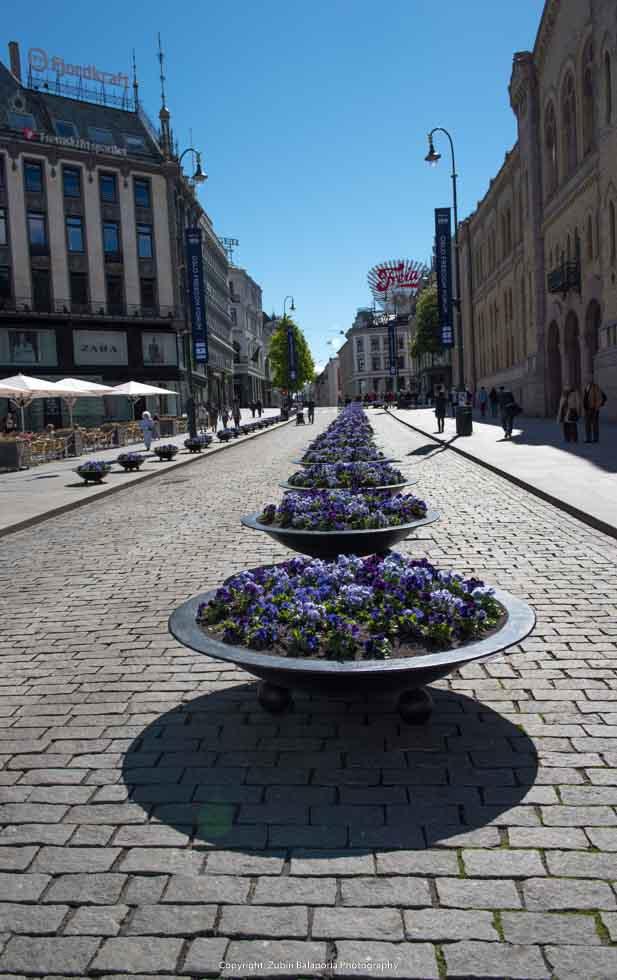 Tile & Vase Symmetry