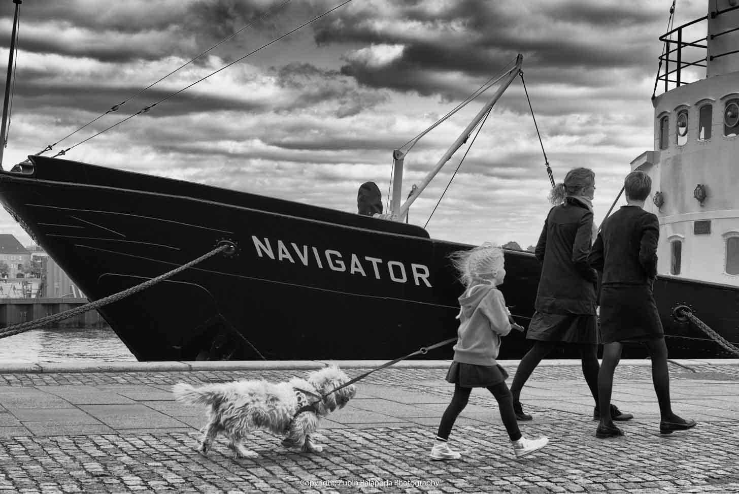 Navigator Girl & Dog