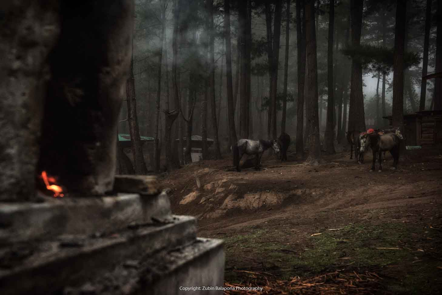 BHU Chorten Smoke Horses  10 WG.jpg