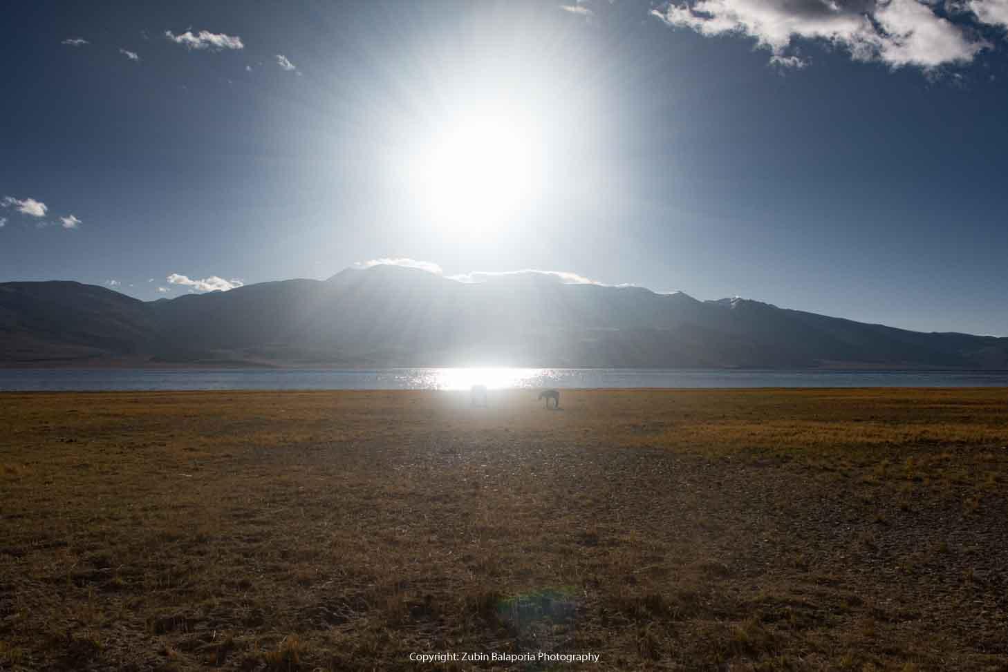 Sunburst on Lake Tsomoriri