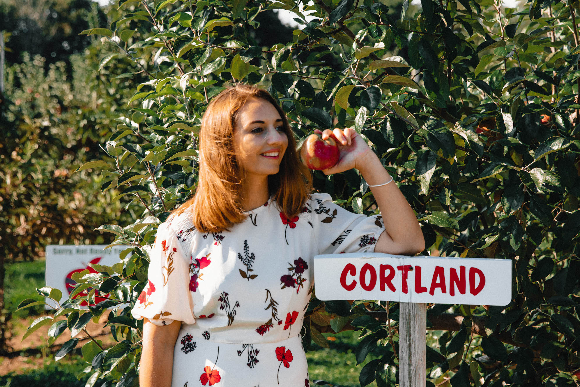 Apple-Picking-in-Fairfield-County-Connecticut-The-Coastal-Confidence-by-Aubrey-Yandow-1641.jpg