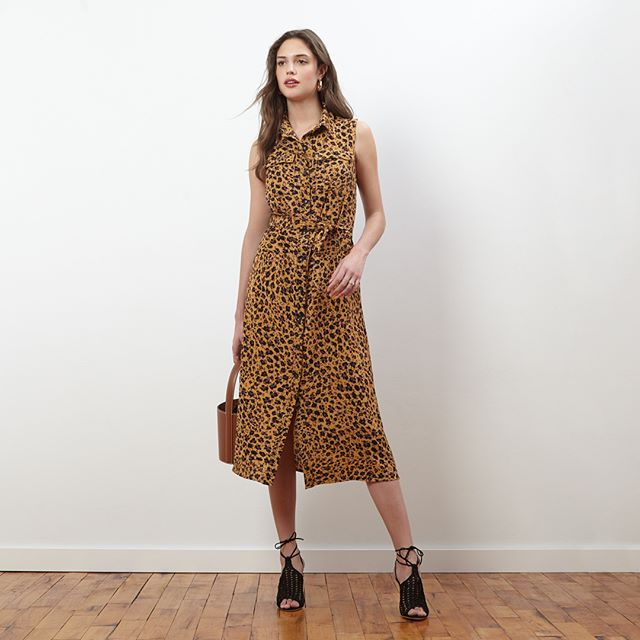 Start the week with style: Think Print. Available now at Amazon, Zappos, and Dillards. Link to shop here and in our bio: https://amzn.to/2Zta4F6  #repost #donnamorgan_nyc #effortlessfashion #summercollection2019 #workwear #effortlessstyle #daytonightdress #fashioncollection2019 #fashiondaily #dailystyle #casualchic #affordablestyle #9to5style #classystyle #workstyle  #corporatestyle #daytonightstyle #prefallcollection2019 #professionalwomen  #allseasondress #allseasonfashion #printdress #animalprintdress #wrapdress