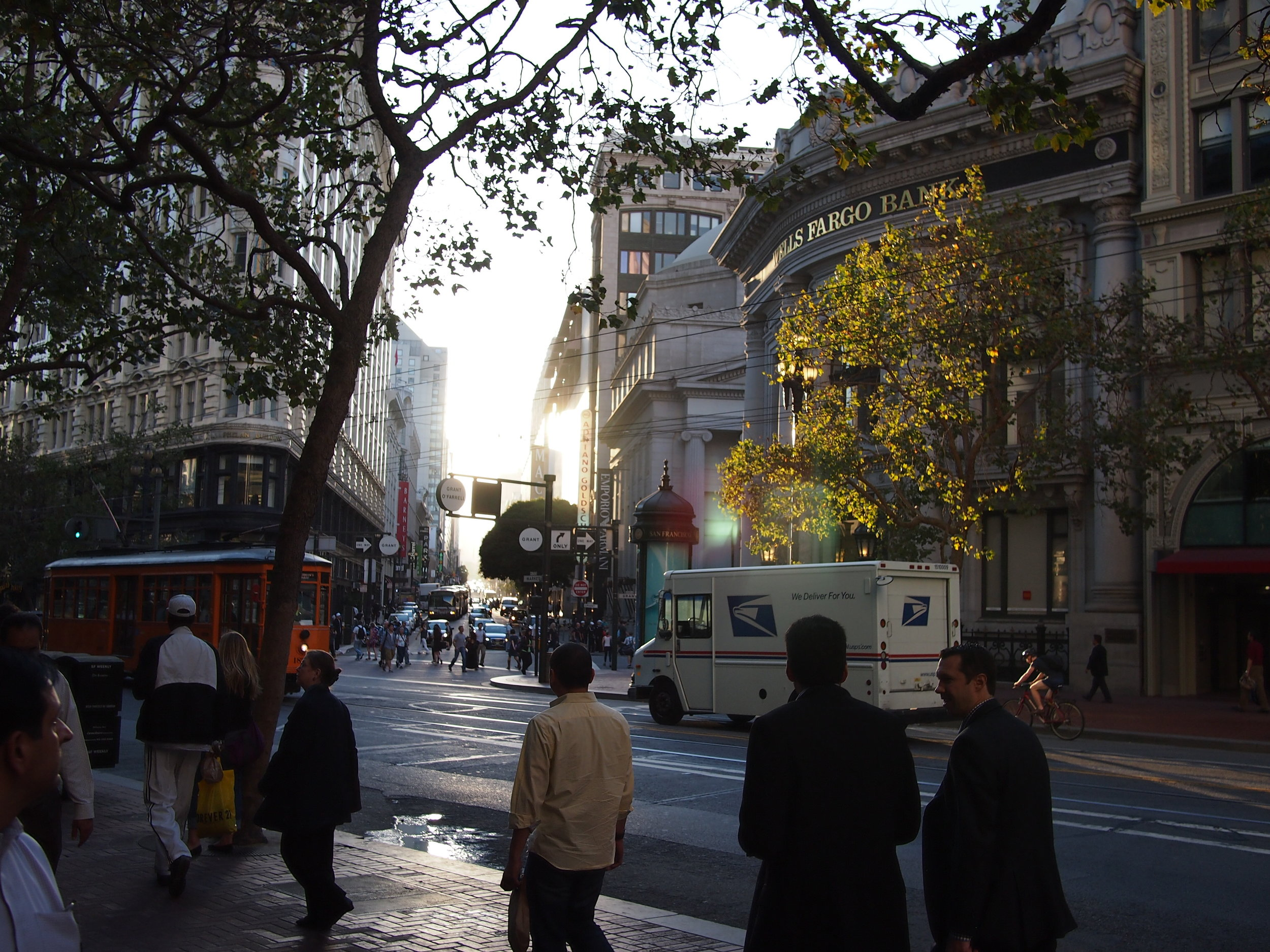 A London Plane tree glows in early morning light in downtown San Francisco.