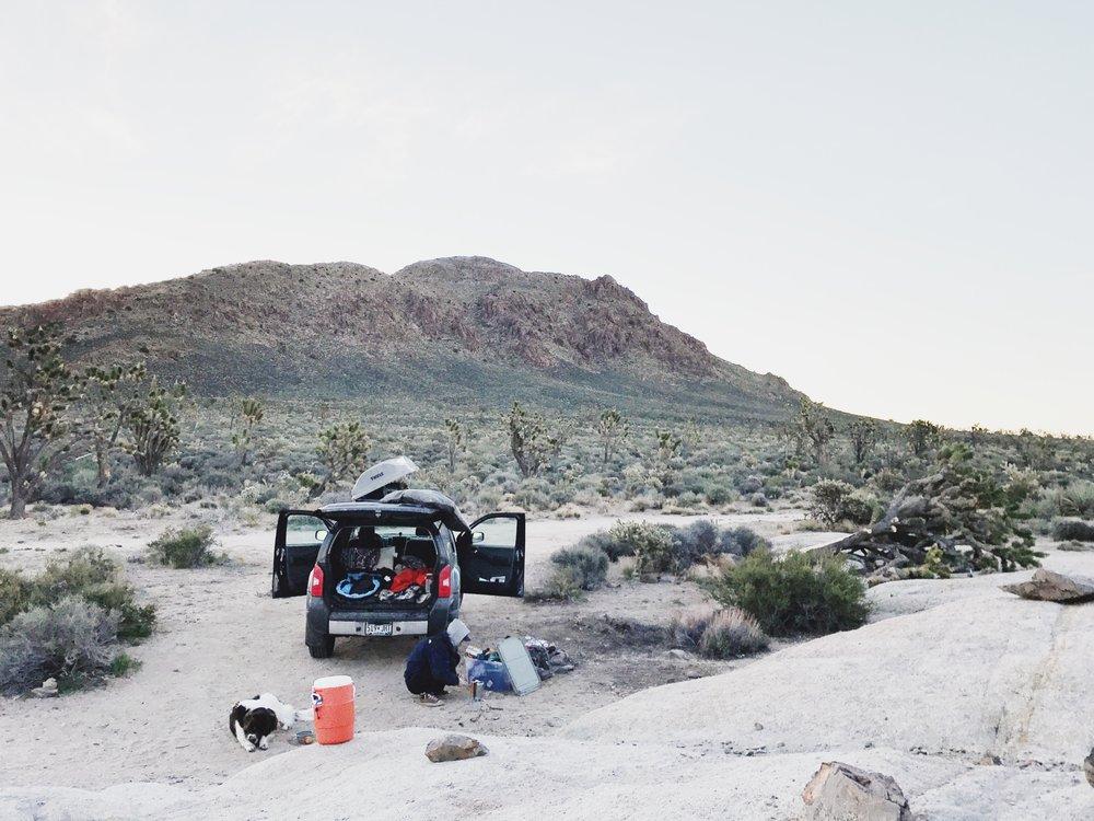 Joshua Tree California Road Trip Adventure Brand Photography