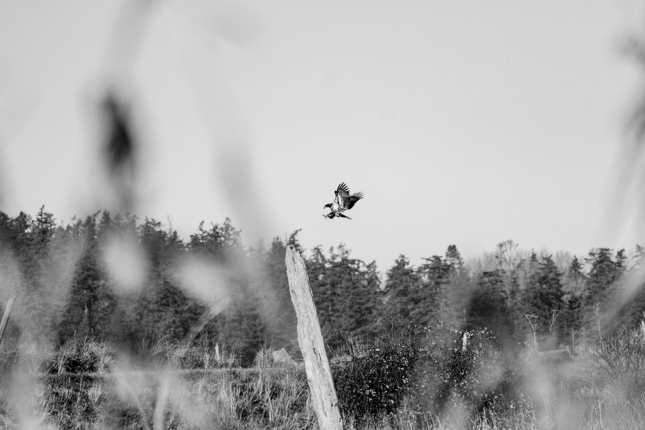 Adventure Photographer in Bellingham, Washington