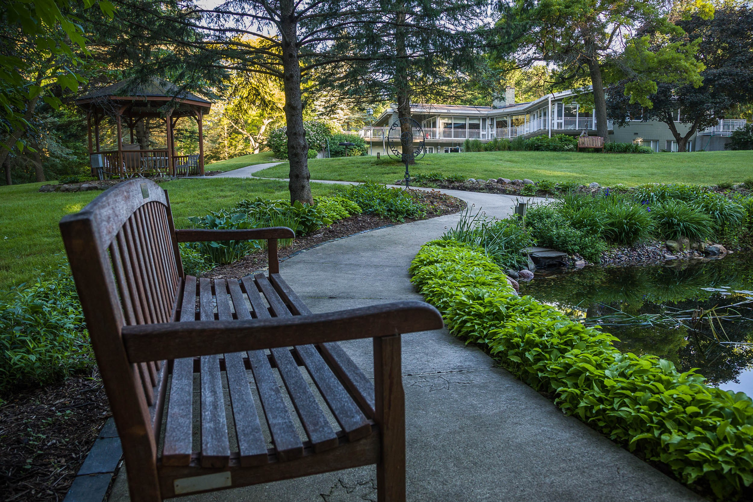 Carolyn Piepho - Bench by pond at house.jpg