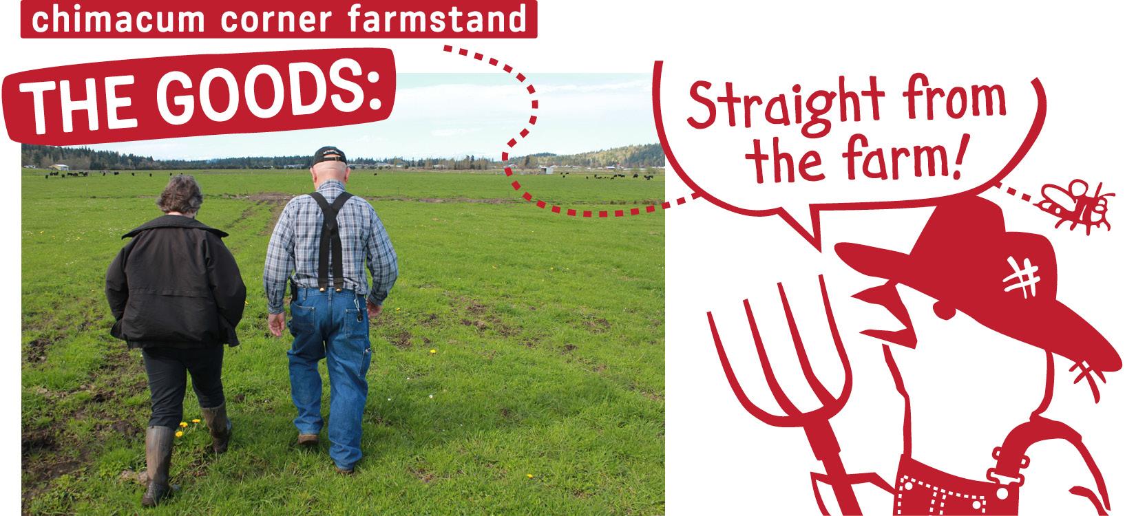 chimacum-corner-farmstand-goods-cartoon.jpg