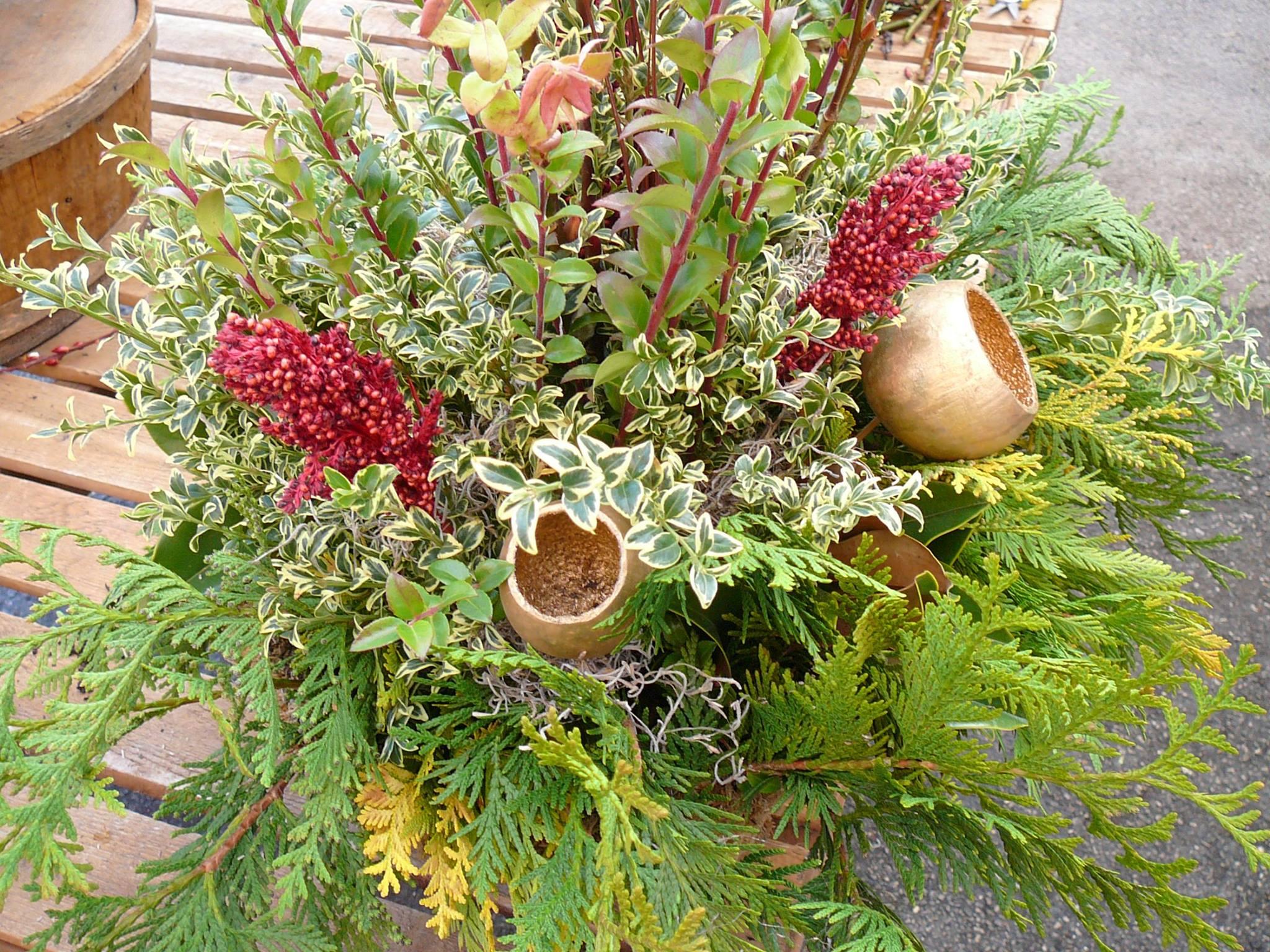 cuttings_arrangement.jpg