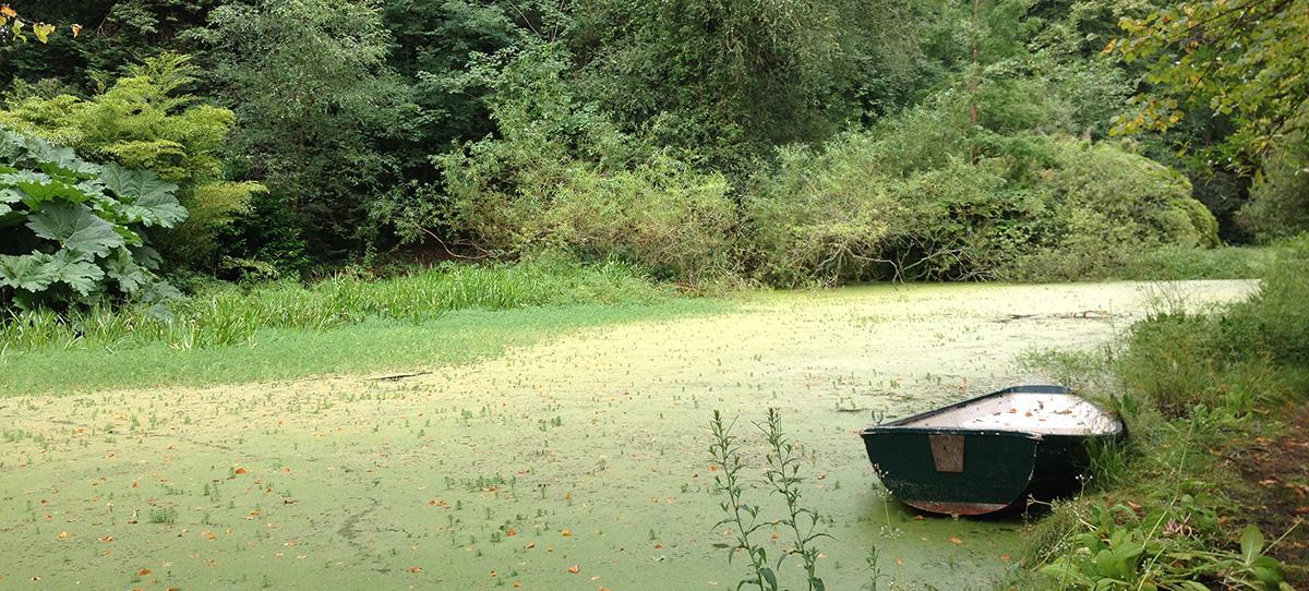 boat_WEB.jpg