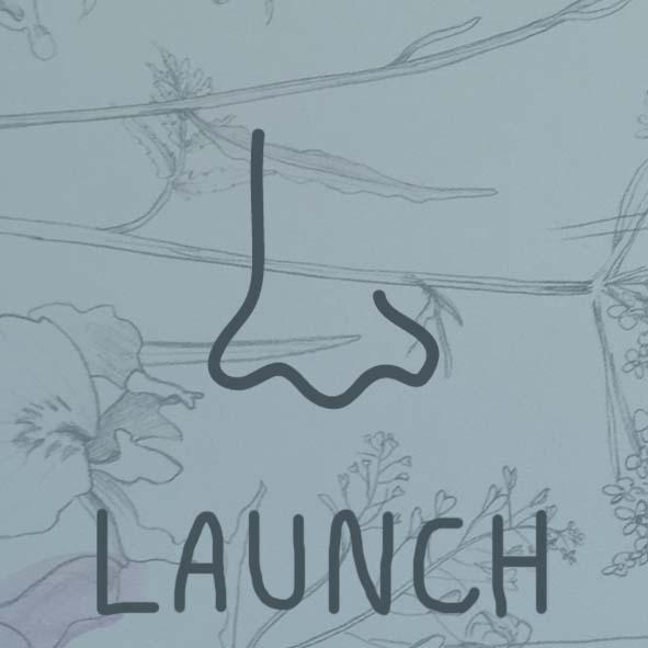launch-d.jpg