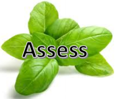 Let's Assess - Solely Made