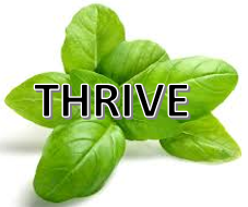 Thrive4.PNG