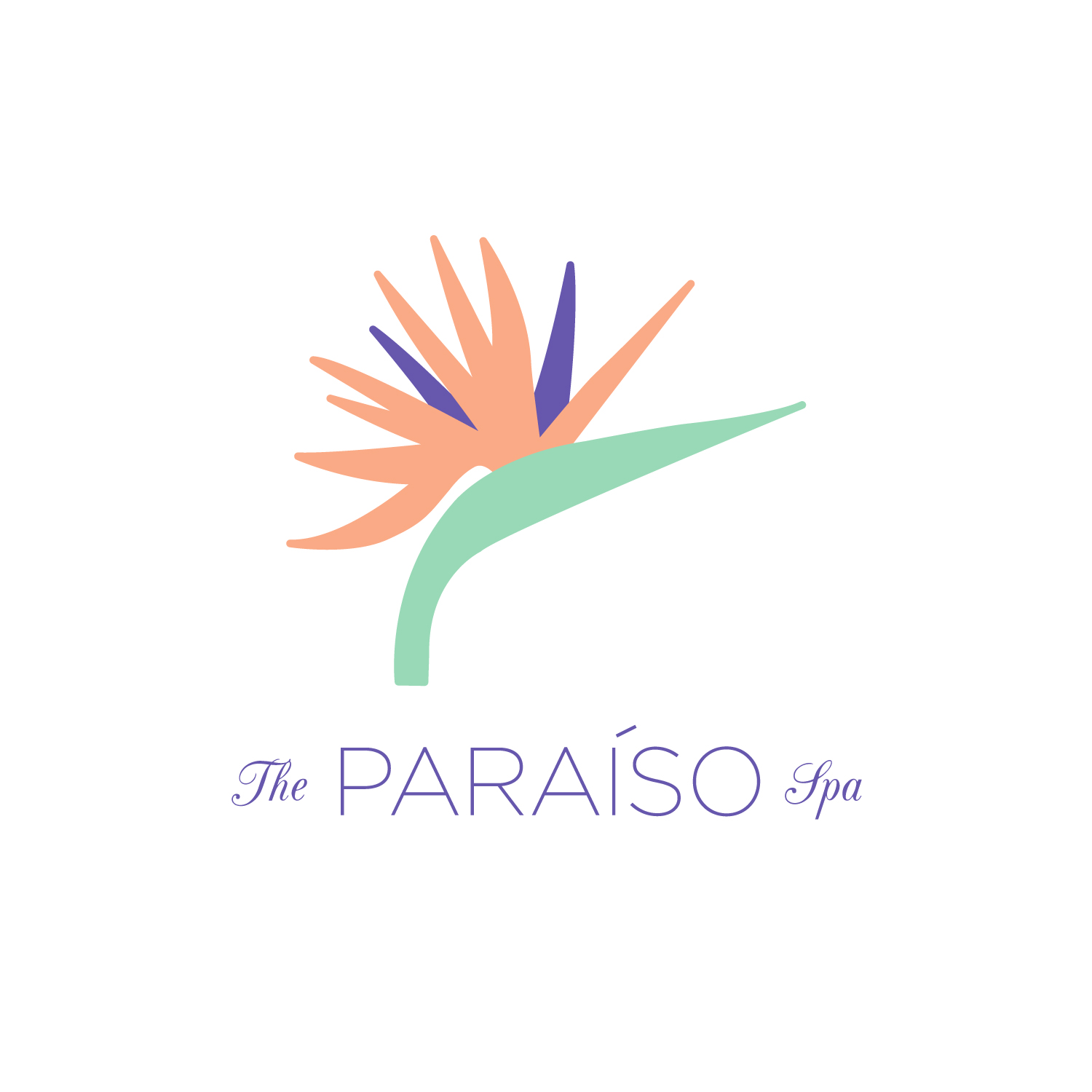 The Paraiso Spa | Logo Design | Bravebird Studio - Branding & Web Design
