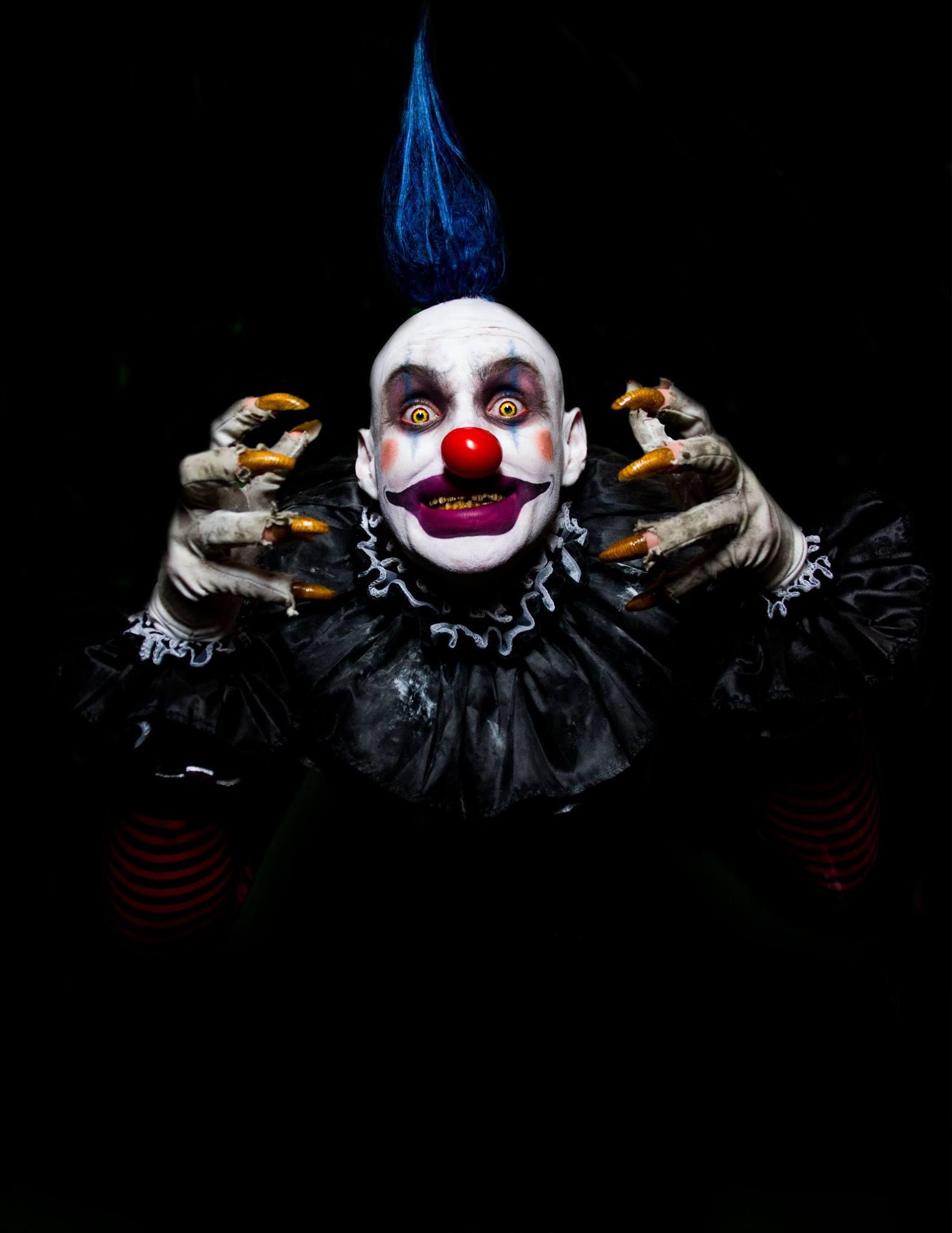 """Kookie""  Photo by Omar Salama"