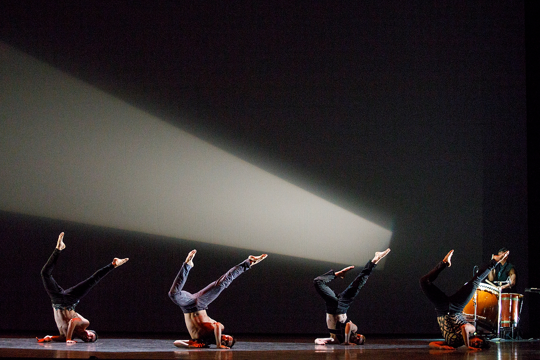 The Four Heavenly Kings (Oct 2017) - Had the honor of performing in William Yong's (Zata Omm) Four Heavenly Kings, part of FALL FOR DANCE NORTH's Program 1 at the Sony Centre For The Performing Arts.Photo courtesy of Bruce Zinger