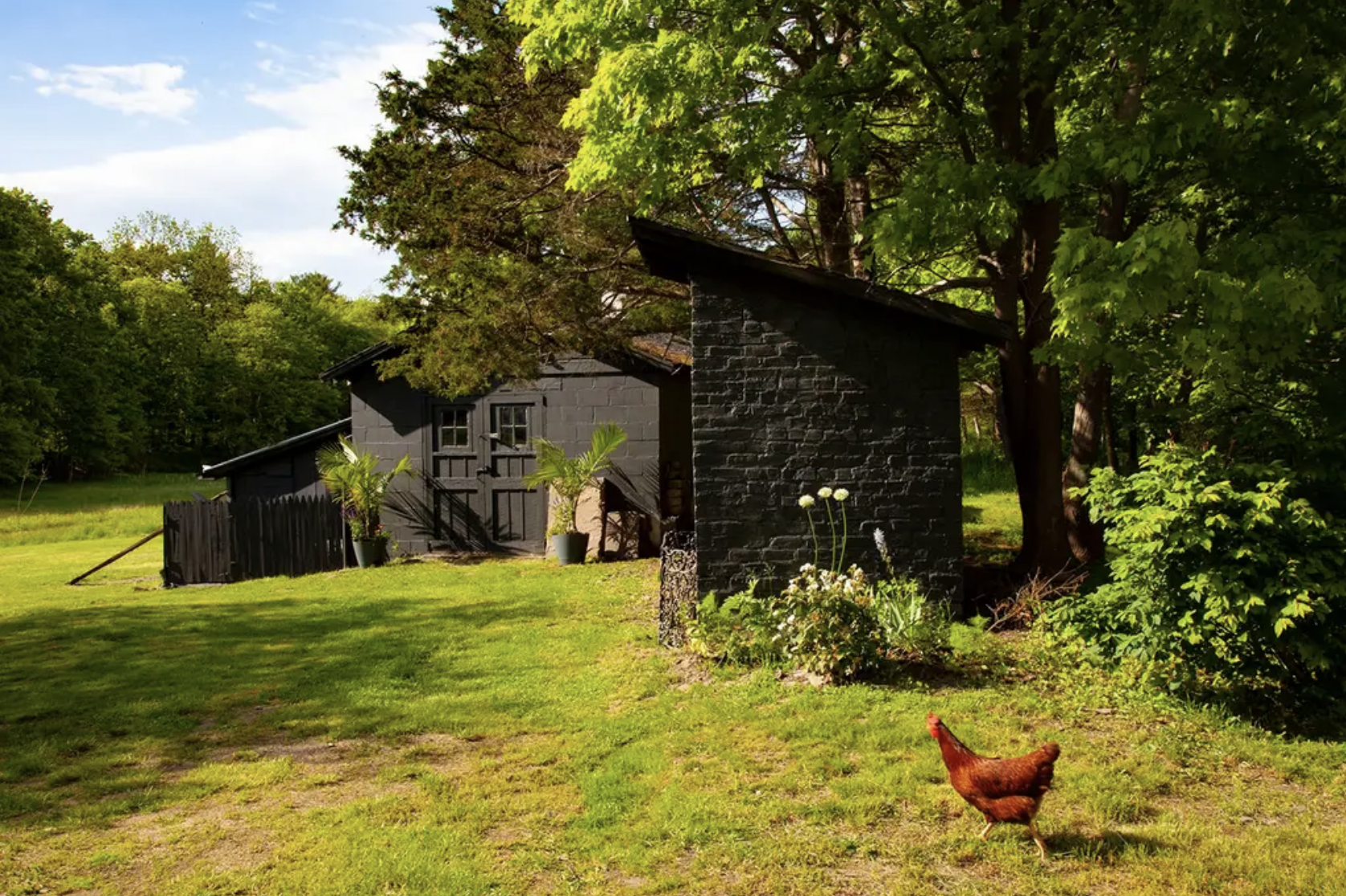 Glasco-ChickenCoop-Saugerties-NY.png