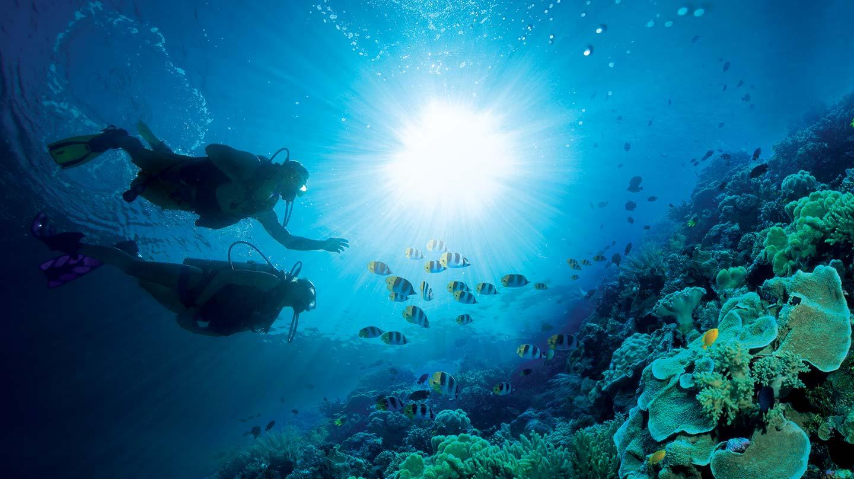 scuba-home.jpg