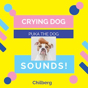 01-04-19-12-08-51_Crying-Dog-Sounds-Puka-Ringtone-by-Chilberg-SNP51430871.jpg
